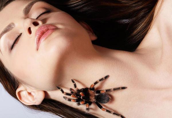 Tipos de fobias e medos