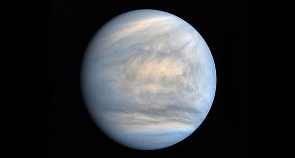 Poderia haver vida na atmosfera de Vênus